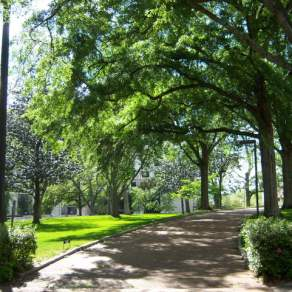 Mississippi MS - Capitol Grounds