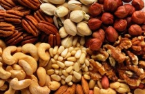 australia-nuts-planted-in-farms